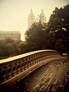Bow Bridge in Central Park 3